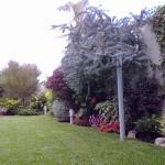 Mantenimiento-espacios-verdes-13jpg