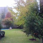 Mantenimiento-espacios-verdes-14jpg